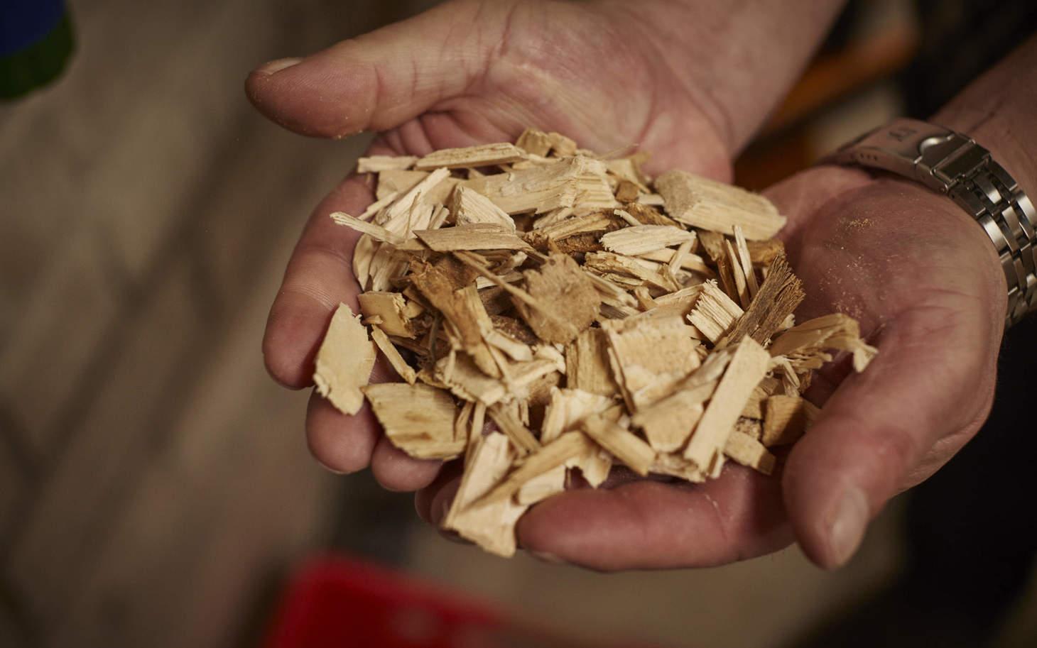 Jakob Baumgartner hält Holzschnitzel in der Hand