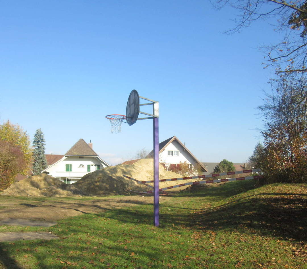 Zälgli Basketballkorb
