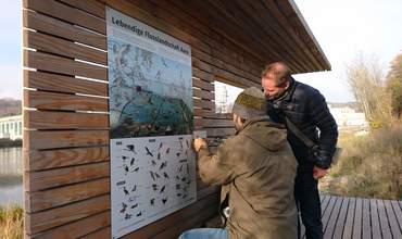 Vogelbeobachtung im Uferpark